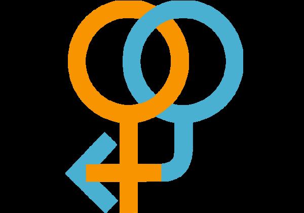 מין, מיניות – מה זה בכלל?